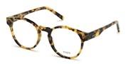 Köp eller förstora dena bild,  Tods Eyewear  TO5234-056.